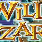 Everything about Wild Wizards Online Slot